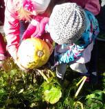 Daržininkystė miesto vaikams padeda pažinti gamtos dėsnius