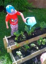 Tėvai padėjo realizuoti daržo idėją