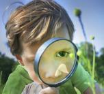 Vaikų žingeidumas – kuo gali prisidėti tėvai?