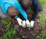 """Iniciatyva """"Žalia pėda"""" skatina kurti žaliąsias aplinkas vaikų ugdymui"""