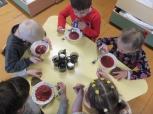 Utenos lopšelis-darželis: pastangos, keičiant vaikų mitybą, atsipirks šimteriopai