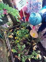 Miesto vaikams – žaliosios edukacinės erdvės vaikų darželyje