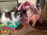 Naminio gyvūno įtaka vaiko kalbos raidai ankstyvajame amžiuje. Kaip Pupa prakalbino Saulę