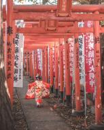 Japonijos ambasada kviečia mokytojus dalyvauti profesinio tobulinimosi programoje