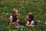 Sušvelninti sveikatos saugos reikalavimai neformaliojo vaikų švietimo organizatoriams ir vasaros stovykloms